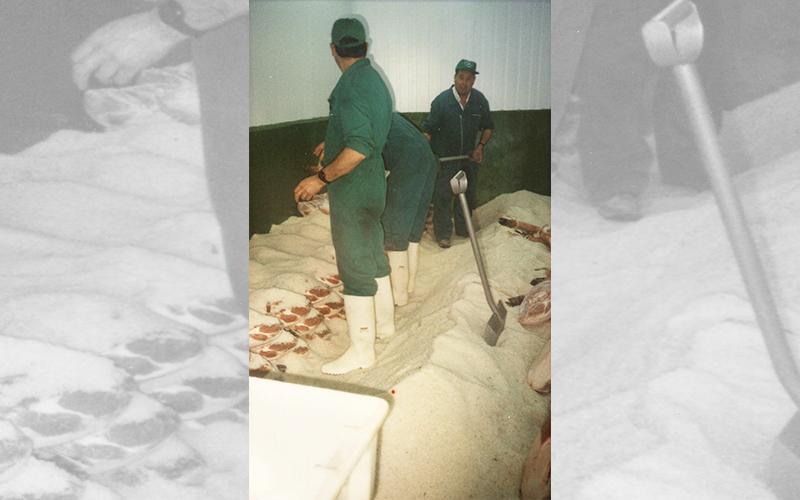 Moises-salado-historia-2